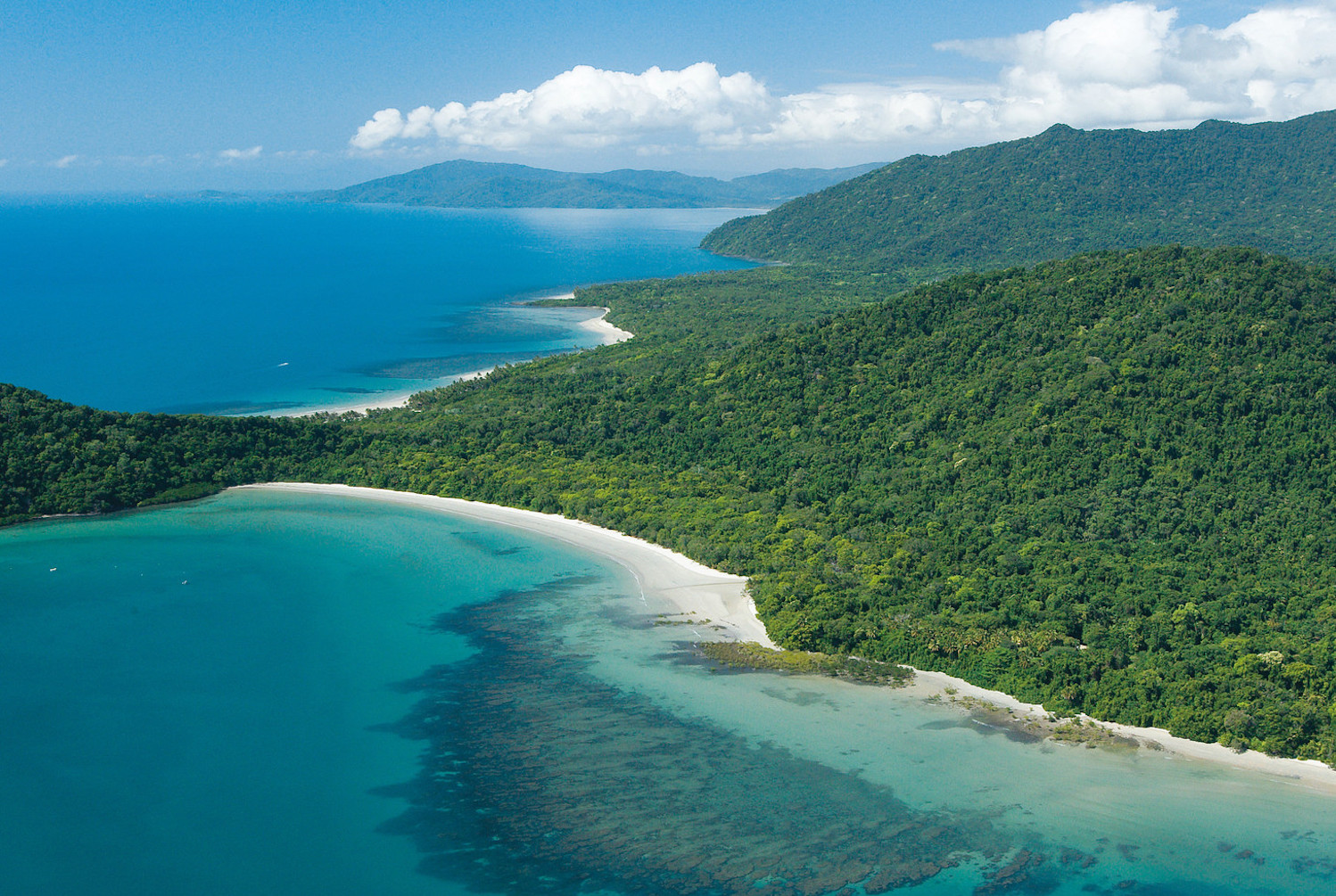 Where the Daintree rainforest meets the Coral Sea