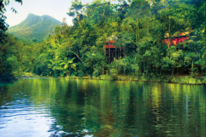 Silky Oaks Lodge - The Daintree River