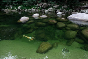 Swim in the clear waters of Mosman Gorge at Silky Oaks Lodge