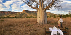 Baobab dining at El Questro Homestead in The Kimberley