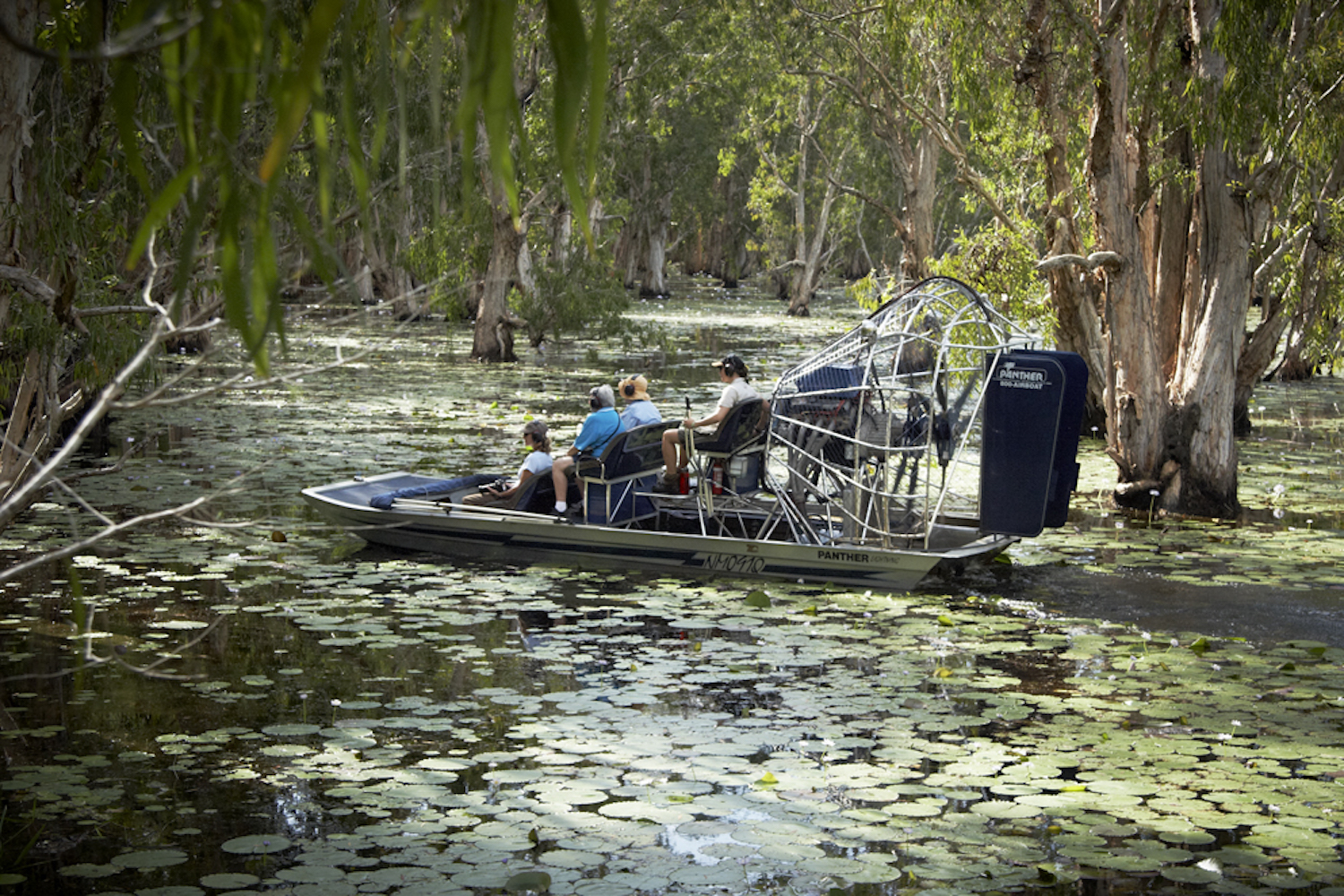 Bamurru Plains - Melaleuca Forest Airboat