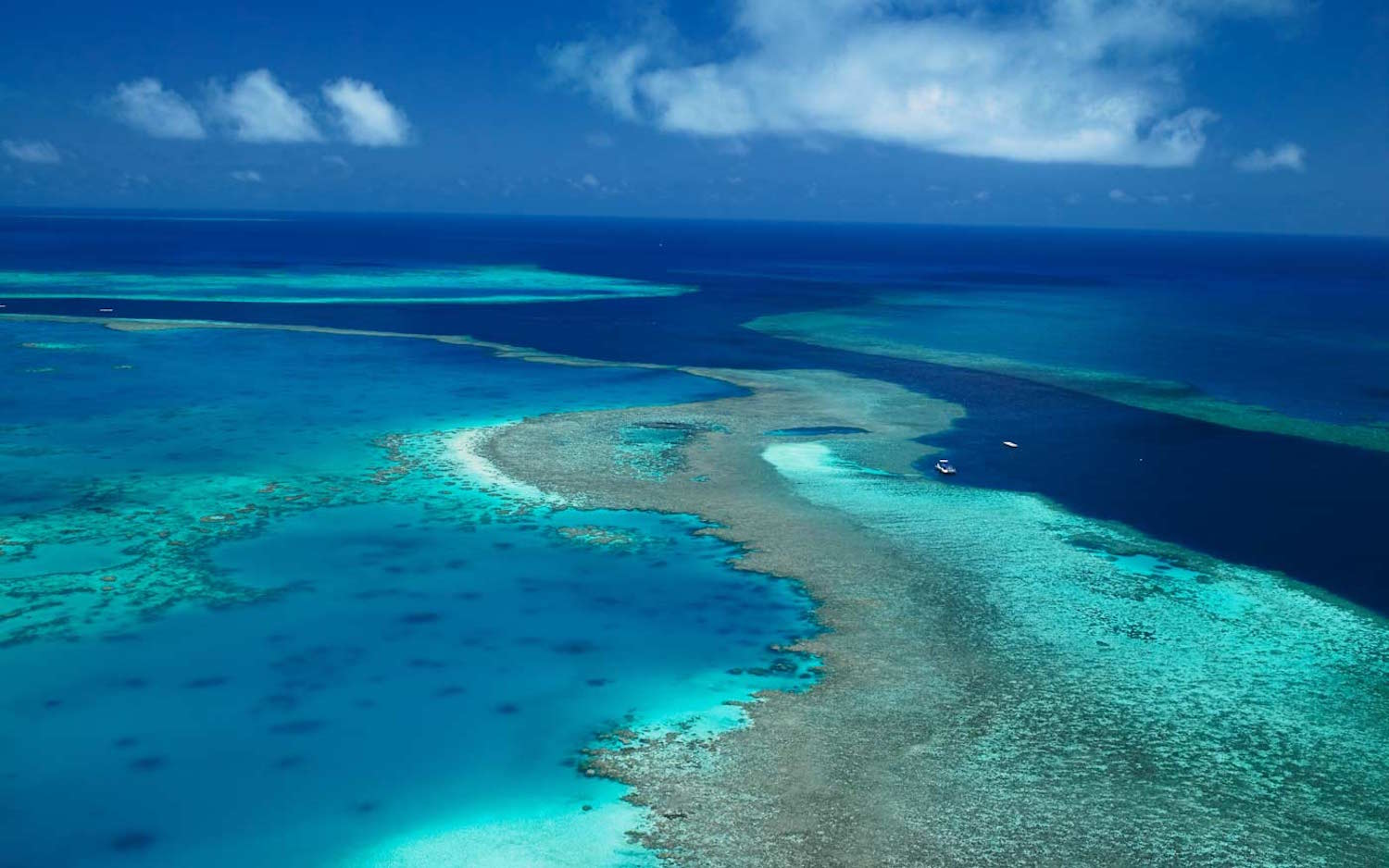 Aerial view of the Great Barrier Reef. Image source: Qualia