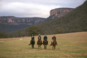 View wildlife by horseback at Emirates Wolgan Valley Blue Mountains