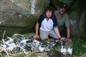 Rob Pennicott with dead sea-birds on Tasman Island