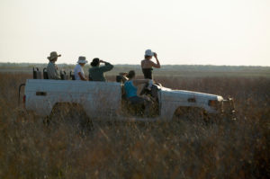 Bamurru Plains has some of the best guides in Australia - image: Peter Eve