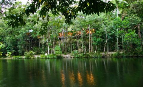 Silky Oaks Lodge – Luxury Lodges of Australia