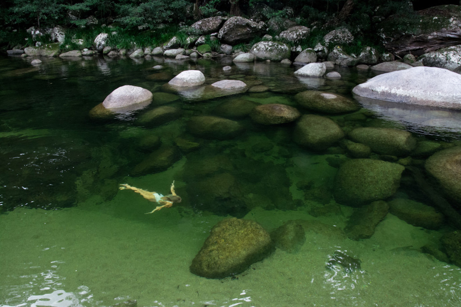 Clear waters of the Mossman Gorge at Silky Oaks Lodge