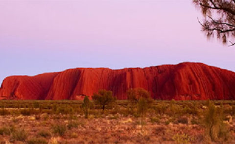 Australia's Best Guides – Brett Graham | Aboriginal culture & Central Australia