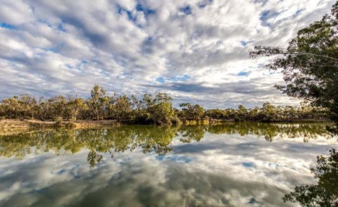 The 4 day/ 3 night Murray River Walk – A Great Walk of Australia