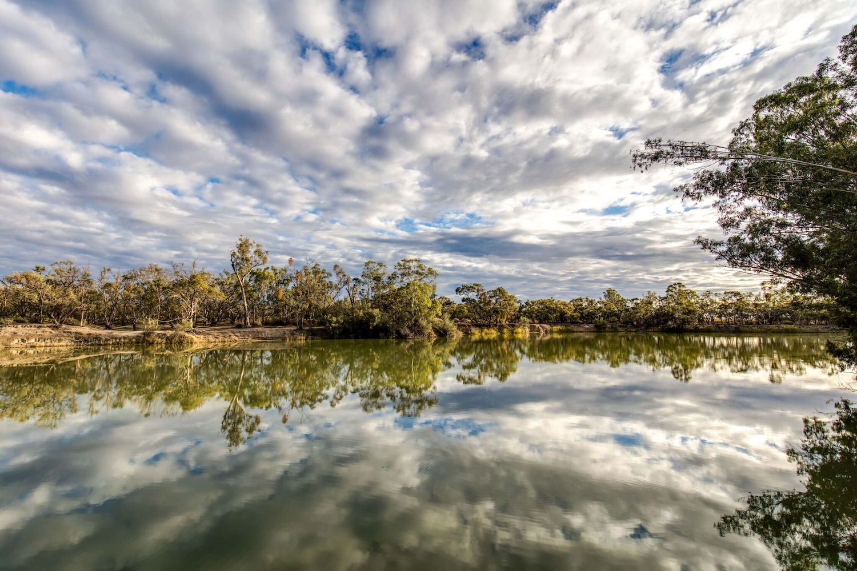 The Murray River walk