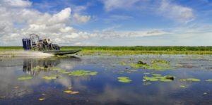 Airboat at Bamurru Plains