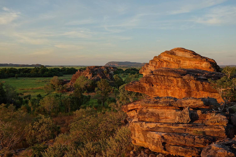 Kakadu - Image credit: Peter Boer