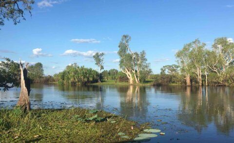 The six seasons of Kakadu