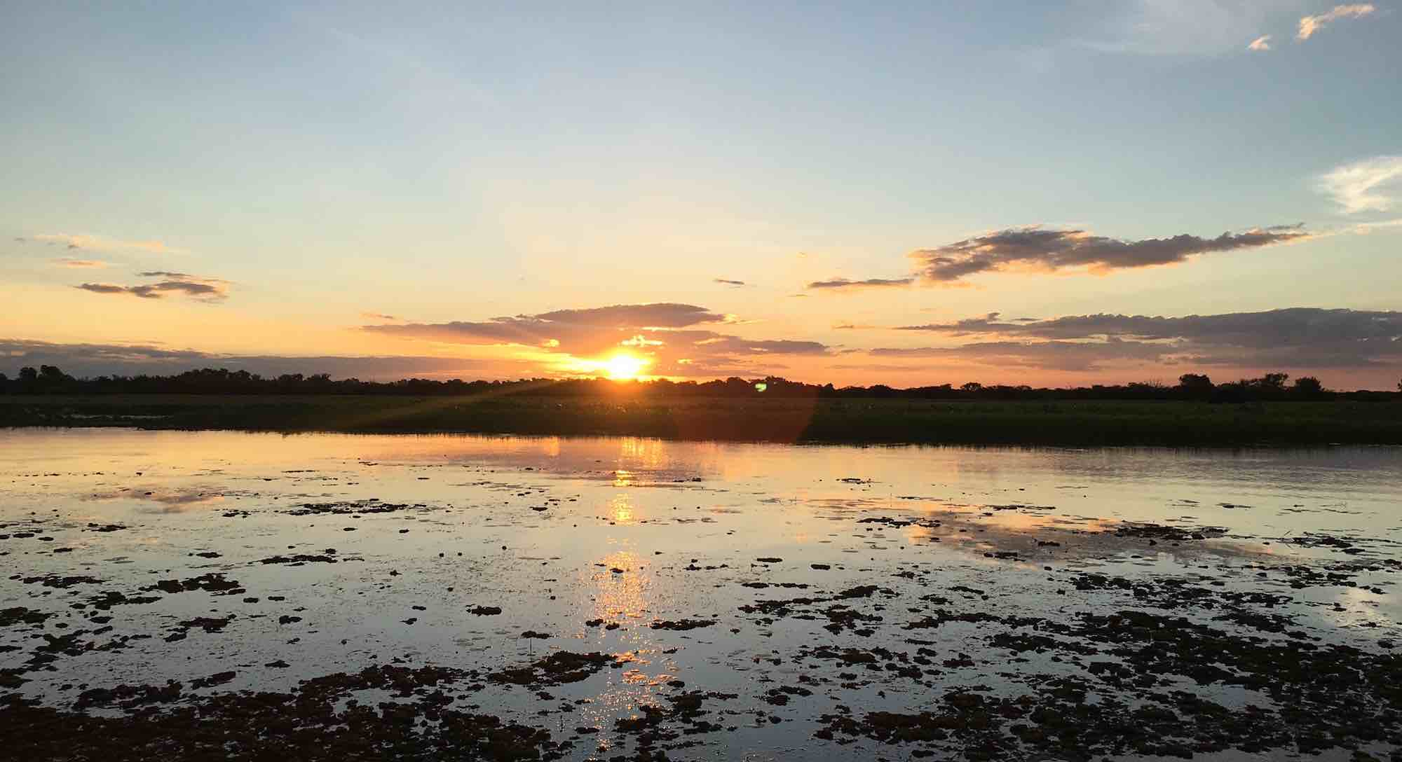 Sunset on Yellow Water in Kakadu