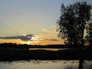 Yellow water sunset cruise