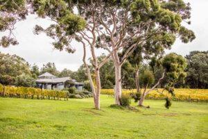 Polperro Villas at Red Hill