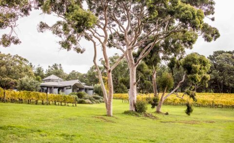 Polperro Villas at Red Hill – A boutique luxury accommodation on the Mornington Peninsula