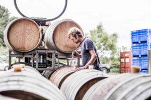 Polperro wines