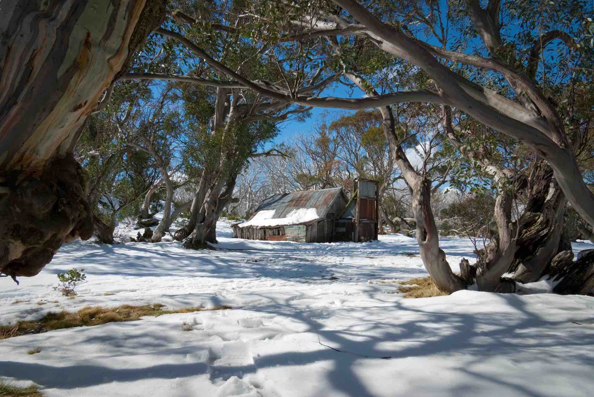 Snow in Australia at an old settler hut on Mt Bogong