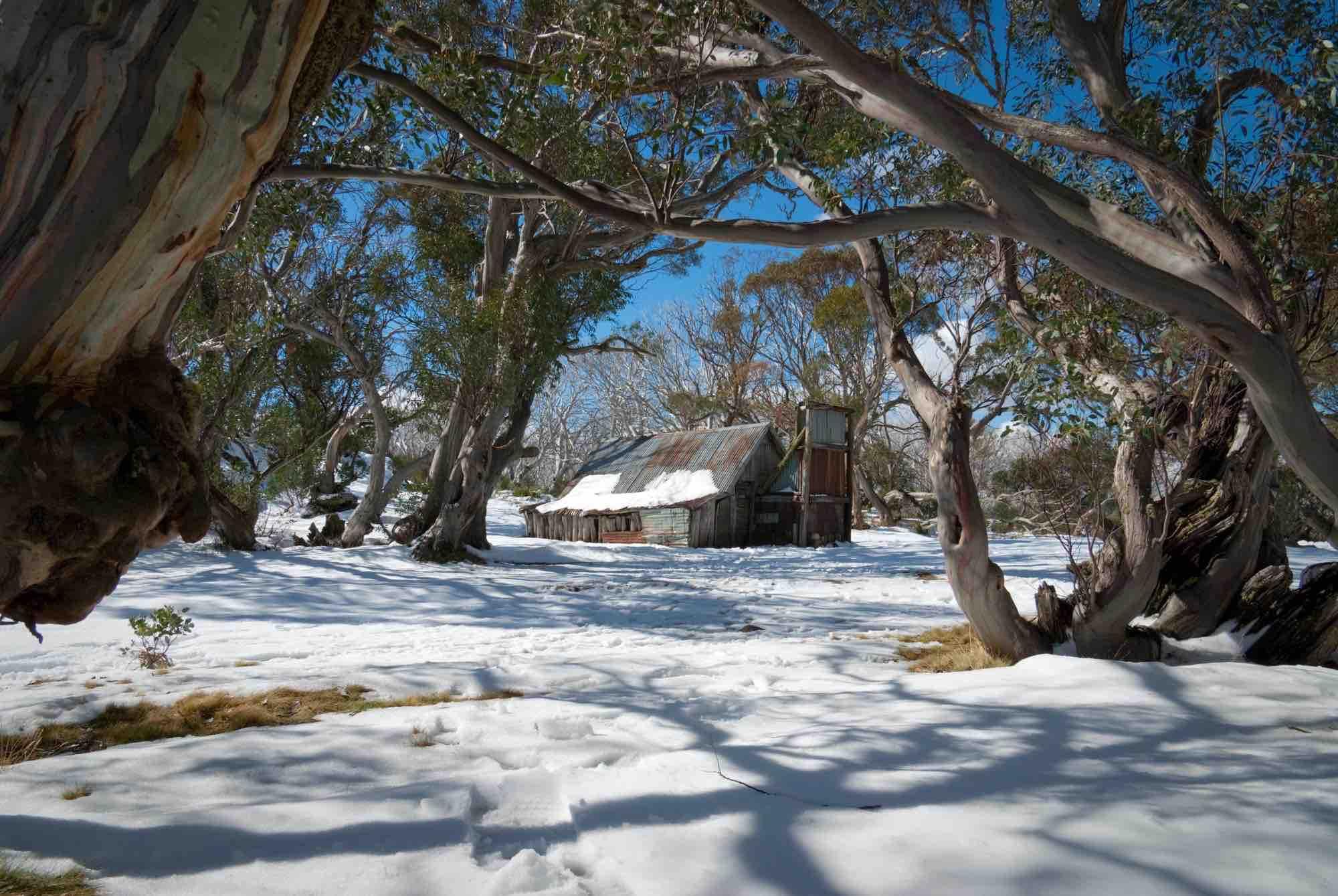 Snow in Australia at an old settler hut on Mt Bogong