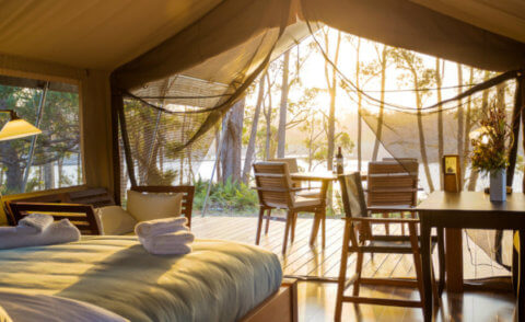Tanja Lagoon Camp – Connect with nature