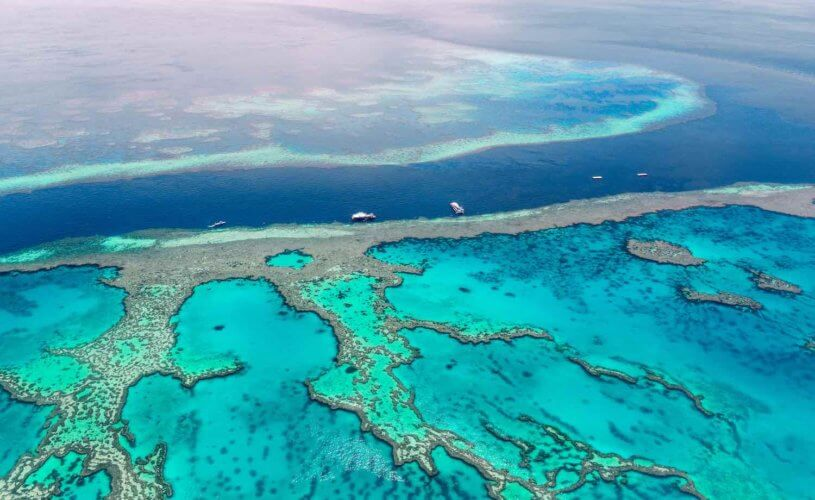 BEHIND THE SCENES WITH RESEARCHERS ON THE GREAT BARRIER REEF